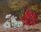 Oil Painting Chinese Hibiscus by W. Revell 1888