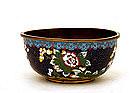 19C Chinese Gilt Cobalt Cloisonne Bowl