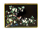 Old Japanese Inaba Cloisonne Box with Bird