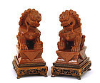 Pair of Chinese GoldStone Carved Fu Dog Lion