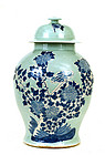 Large Chinese Celadon Blue & White Vase Jar Bird