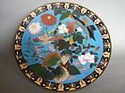 Japanese Cloisonne Bird & Flower Plaque Meiji 1868-1912
