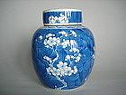 Kangxi - Style Prunus Pattern Jar & Cover - Guangxu