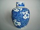 Kangxi style Prunus Pattern Jar - early 20th Century