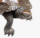 Meiji Japanese Bronze Turtle Tortoise Okimono Sg