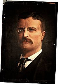 1900 Vice President Theodore Roosevelt Reprinted Photo