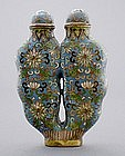 Chinese Cloisonne Snuff Bottle Double Body, Qing