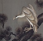 Hawk on Pine Tree on Men's Antique Kimono, Wall Decor