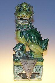 Famille verte foo lion, Kangxi ( 1662 - 1722 )