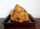 Large natural amber ( tianran bei'ou mila) on hongmu tray. 420 grams.