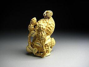 Japanese Antique Peanut Bee Netsuke Okimono Statue Art