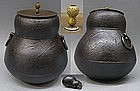 Big Japanese Chagama Tetsubin Tea Cast Iron Pot - GOURD