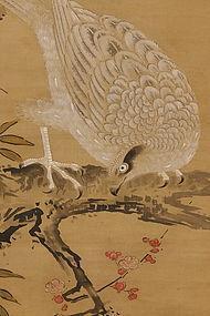 Hawk Perched on Plum Branch, Kano-ha (1834)