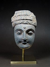Gandhara Grey Schist Head of Buddha, 2nd/3rd Cent AD