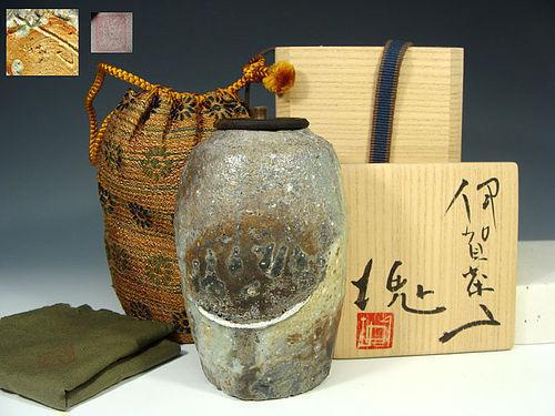Iga Chaire Tea Caddy by Tsujimura Kai