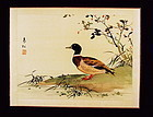 Chinese Original Painting on Silk Duck signed