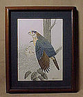 Original Ink and Watercolor painting Framed Hawk Family