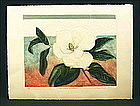 Pretty Magonolia Flower Etching by Mary E. Davidson