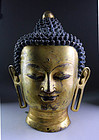 Important large Gilt bronze head of Buddha, Ming Dynasty