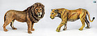 Franz Bergman Set of 'Female & Male Lions' Cold Painted Vienna Bronze