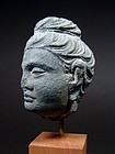 GANDHARA Grey Schist Head of Buddha, 2-3rd Century AD.