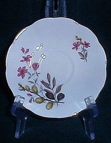Royal Dover Bone China England Saucer