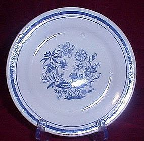 Oxford Brazil Blue Onion Salad Plate