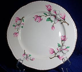 Homer Laughlin Dogwood Dinnerware
