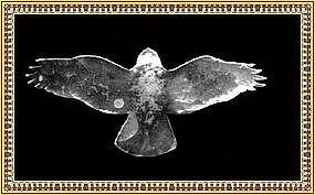Arts Crafts Hammered Sterling Pin Bird Eagle Hawk