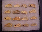 16 Bone Pendants found together in Virginia, Hopewell