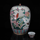 GUANGXU / REPUBLIC FAMILLE ROSE ROOSTER GINGER JAR