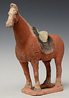 Tang Dynasty, Chinese Painted Pottery Standing Horse