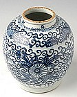 A Blue and White Jar with Flower and Butterfly Motifs