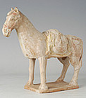 Northern Qi Dynasty, Rare Chinese Painted Pottery Horse