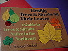 Identify Trees & Shrubs by Their Leaves~ Knobel