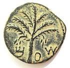 A BRONZE COIN OF THE BAR KOCHBA REVOLT