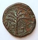 A BRONZE COIN OF SHIMON BAR KOCHBA