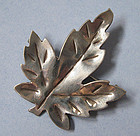 Canadian Sterling Leaf Pin, c. 1970