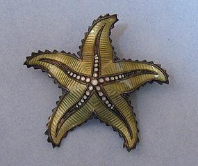 Norwegian Sterling and Enamel Starfish Pin
