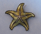 Norwegian Sterling and Enamel Starfish Pin