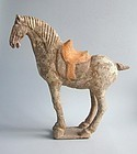Large Chinese Tang Dynasty Painted Pottery Horse with Oxford Test
