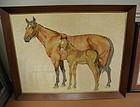 Rare Vintage Karastan Loomed Carpet Area Rug Horse Colt Mare