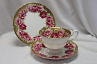 Shelley hand coloured cup saucer and plate pattern 8865