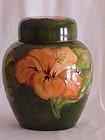Moorcroft ginger jar Coral Hibiscus