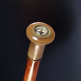 A Compass Inset Horn and Mahogany Cane/Walking Stick,