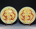 Pair of Famille Rose Dragon Pattern Plates,