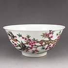 Chinese Famille Rose Enameled Porcelain Bowl.