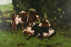 David Gauld painting of Four Calves Resting