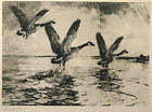 Frank W. Benson signed lithograph, Geese in Flight