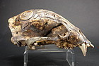 Important Adorned Bear Skull, Dayak Peoples